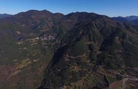 海拔1000多米私家农场合作开发招商 土地编号:61