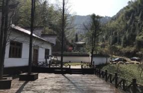 浙江杭州临安中国碳汇林基地内民房518亩租售 土地编号:65