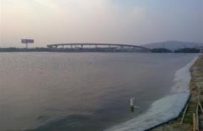 浙江省杭州市萧山区70亩鱼塘虾场出租 土地编号:69