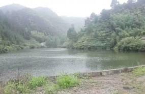 杭州天目山风景区大道边带260亩水库农庄 土地编号:73