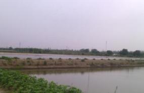 浙江省嘉兴150亩水域转让 土地编号:77