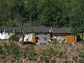 农村建房什么情况下会被罚款或拆除?2019年最新宅基地建房政策解读
