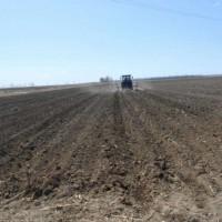 云南文山州丘北县780亩旱田提供玉米示范合作 土地编号:253