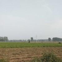 河南省商丘市民权县280亩集成地块出租