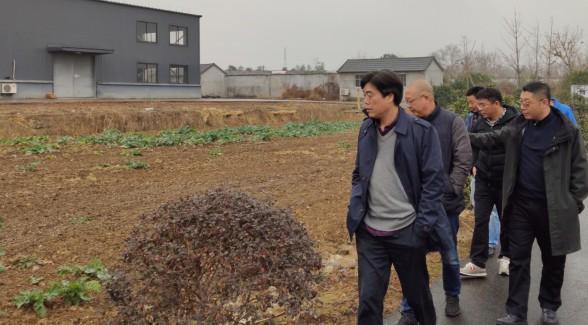 """杭种集团鲜食玉米大会""""第三次筹备会议召开"""